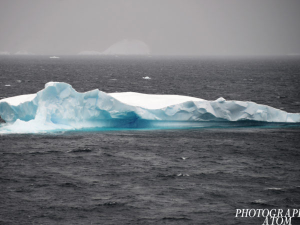 Drift ice flowing to Antarctica Traveled by the waves, wandering around the sea in Antarctica