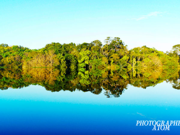 This was taken in the Brazilian Amazon. I took a boat ride from Manaus to the deepest part of the jungle over two days.  Although the upper part of the Amazon River is a wide area, the height difference is very low and there is no wave. You will see beautiful reflections.  The color of the sky is reflected to the river and is more blue.